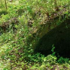 Entrance to Connellsville Coke Ovens