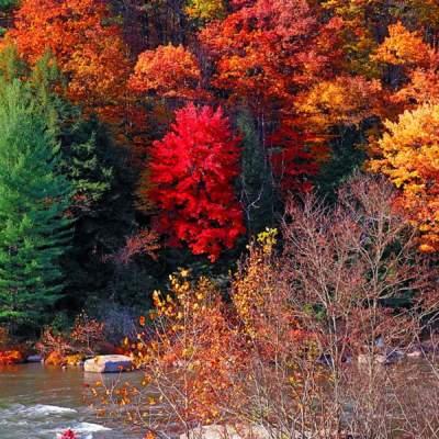 Ferncliff Peninsula in autumn