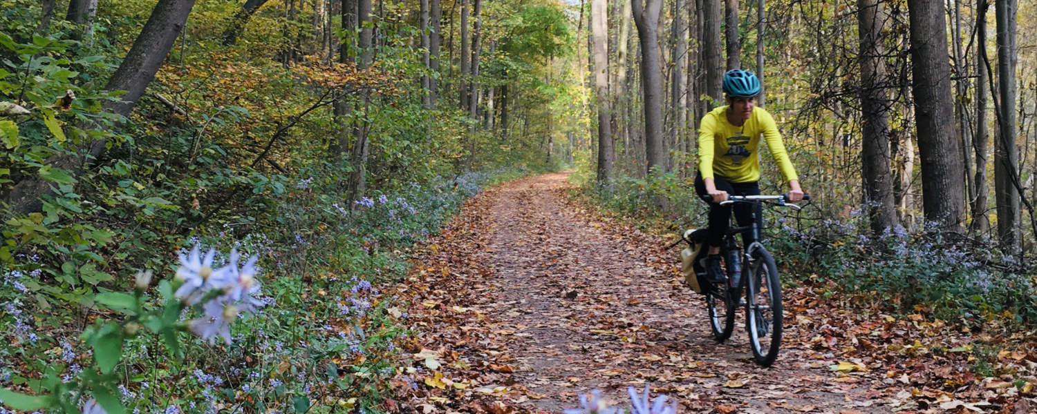 Trail cyclist in Ohiopyle State Park