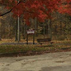 Parking at Cedar Creek Park in the autumn