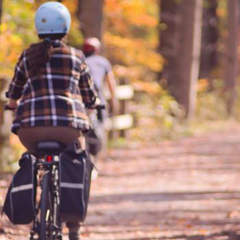 Golden Triangle Bike Rentals Tours and Shuttles
